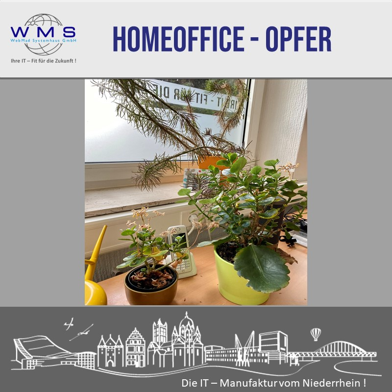 Home Office Opfer