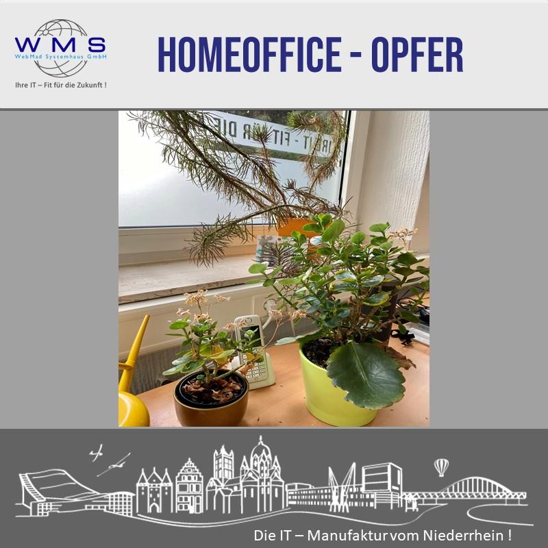 Home Office Opfer